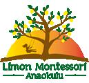 Limon Montessori Anaokulu